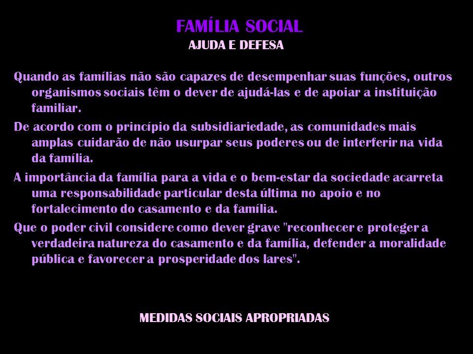 F AMÍLIA SOCIAL AJUDA E DEFESA Quando as famílias não são capazes de desempenhar suas funções, outros organismos sociais têm o dever de ajudá-las e de apoiar a instituição familiar.