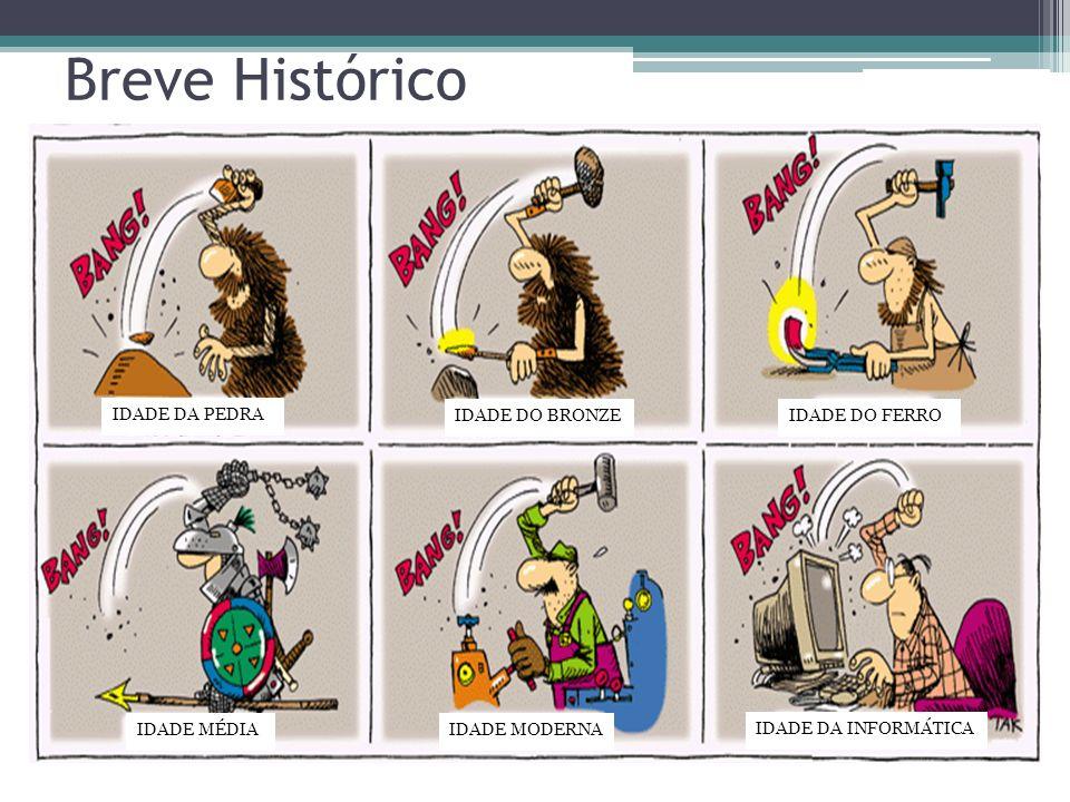 IDADE DA PEDRA IDADE DO BRONZEIDADE DO FERRO IDADE MÉDIAIDADE MODERNA IDADE DA INFORMÁTICA Breve Histórico