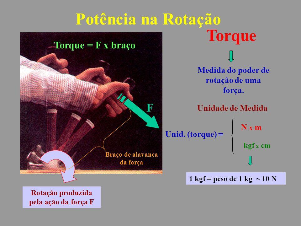 Torque Braço de alavanca da força F Torque = F x braço Medida do poder de rotação de uma força.