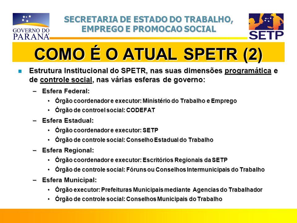 SECRETARIA DE ESTADO DO TRABALHO, EMPREGO E PROMOCAO SOCIAL COMO É O ATUAL SPETR (2) n Estrutura Institucional do SPETR, nas suas dimensões programáti