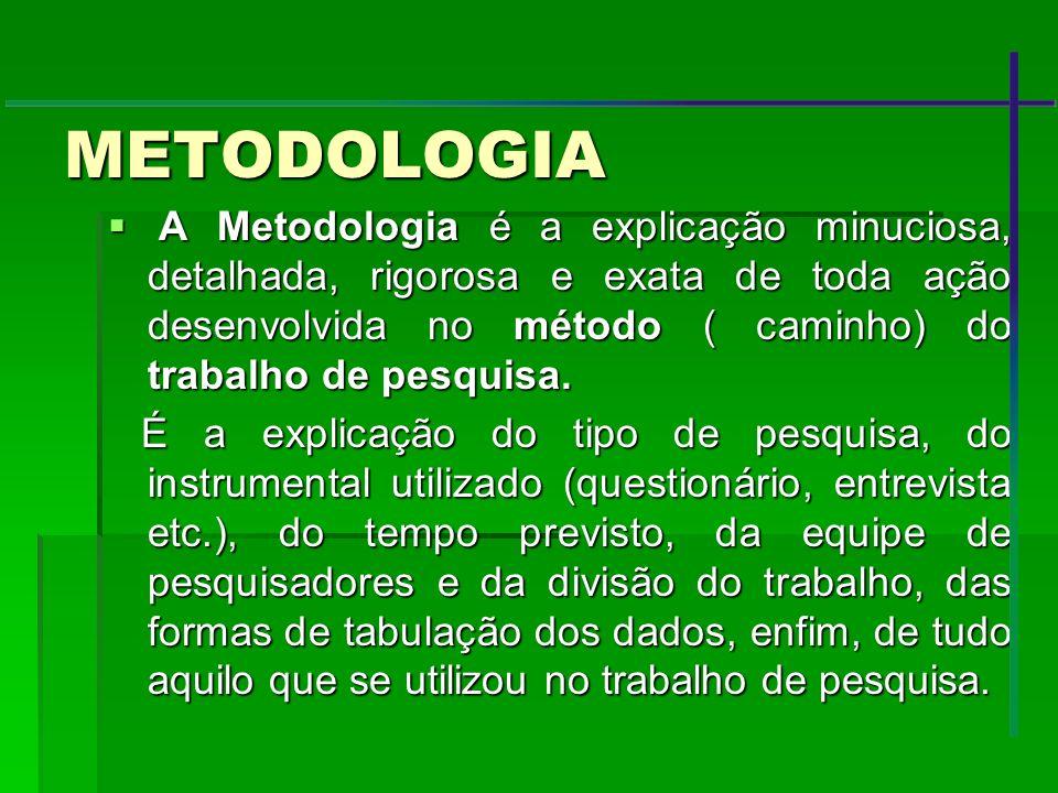 METODOLOGIA A Metodologia é a explicação minuciosa, detalhada, rigorosa e exata de toda ação desenvolvida no método ( caminho) do trabalho de pesquisa
