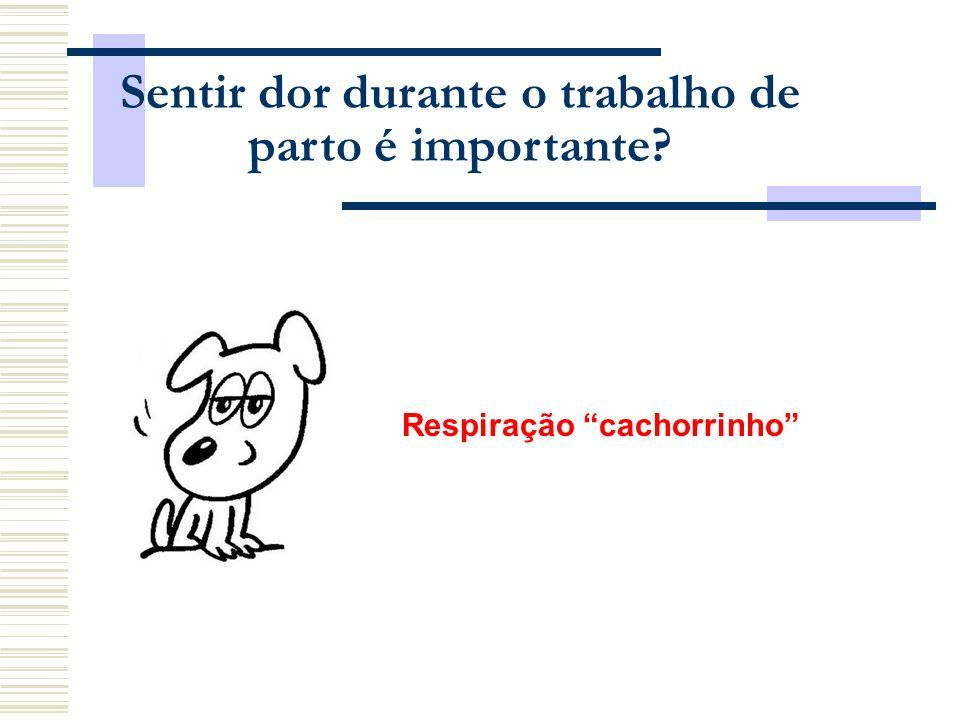 Respiração cachorrinho Sentir dor durante o trabalho de parto é importante?