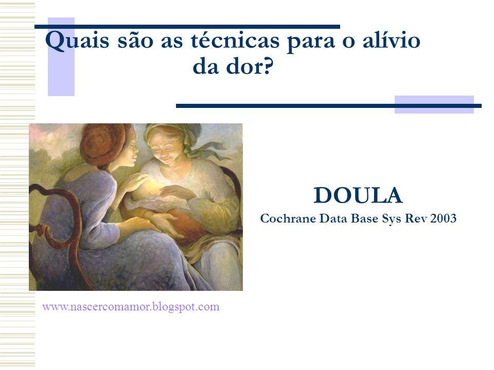 DOULA Cochrane Data Base Sys Rev 2003 Quais são as técnicas para o alívio da dor? www.nascercomamor.blogspot.com