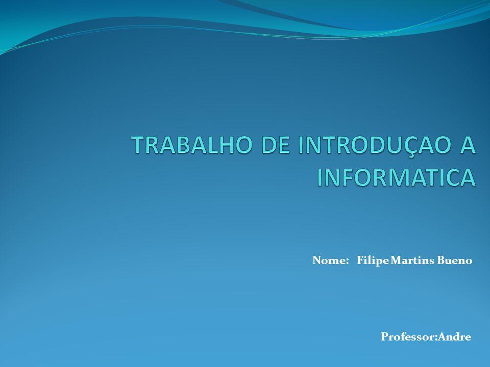 Nome: Filipe Martins Bueno Professor:Andre