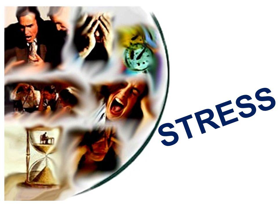 Um conjunto de reações, que ocorrem em um organismo quando está submetido a um esforço de adaptação.