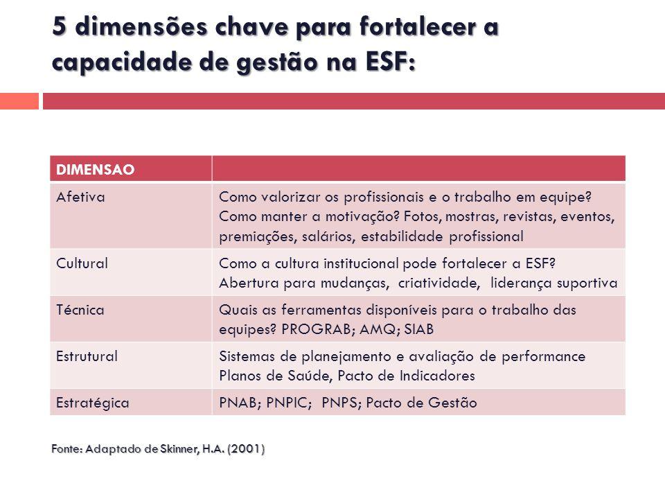 5 dimensões chave para fortalecer a capacidade de gestão na ESF: Fonte: Adaptado de Skinner, H.A. (2001) DIMENSAO AfetivaComo valorizar os profissiona