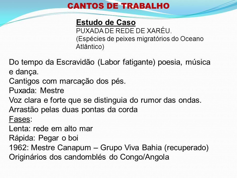 CANTOS DE TRABALHO Estudo de Caso PUXADA DE REDE DE XARÉU.
