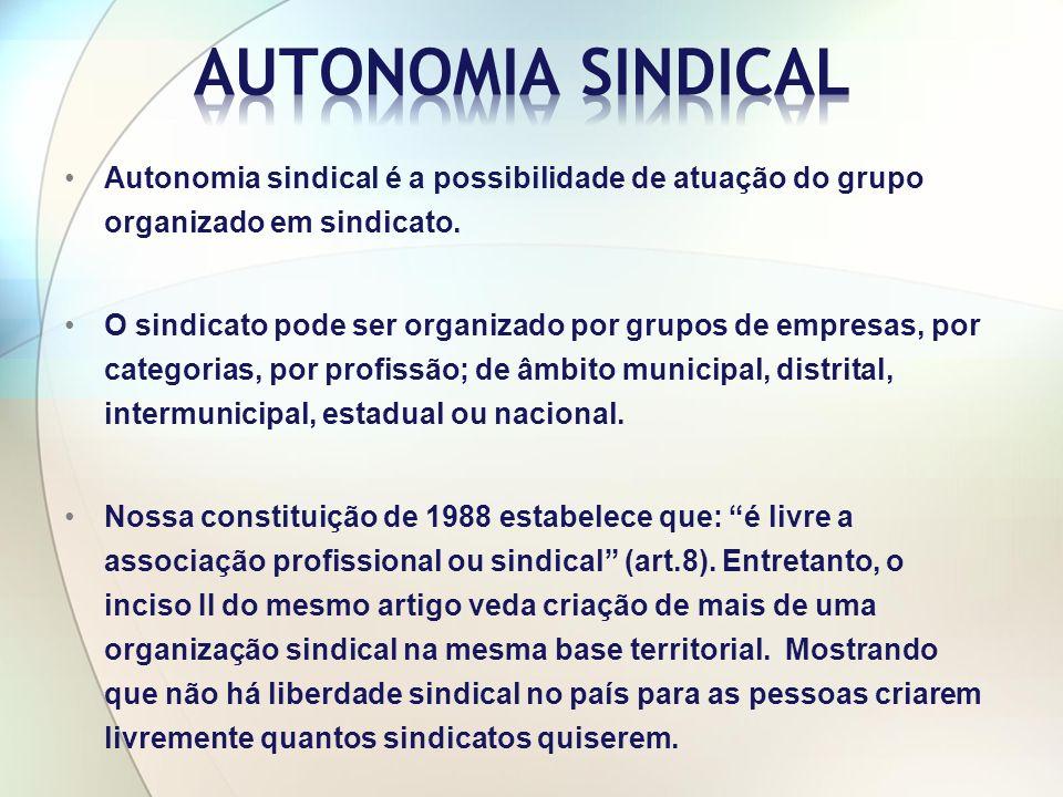 Autonomia sindical é a possibilidade de atuação do grupo organizado em sindicato.