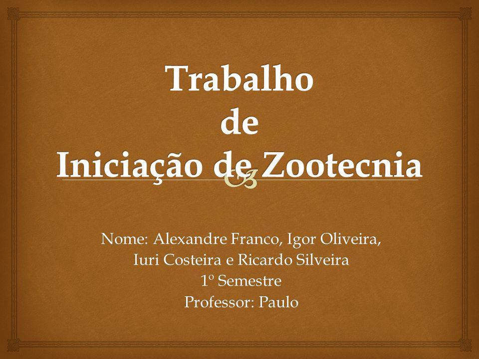 Nome: Alexandre Franco, Igor Oliveira, Iuri Costeira e Ricardo Silveira 1º Semestre Professor: Paulo