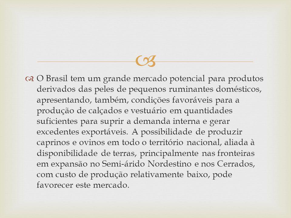 O Brasil tem um grande mercado potencial para produtos derivados das peles de pequenos ruminantes domésticos, apresentando, também, condições favoráve