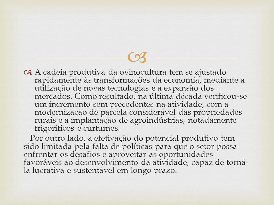 A cadeia produtiva da ovinocultura tem se ajustado rapidamente às transformações da economia, mediante a utilização de novas tecnologias e a expansão