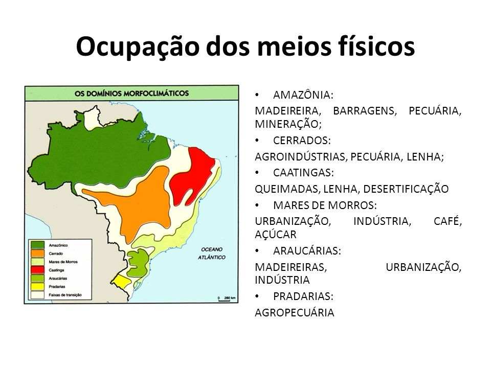 Ocupação dos meios físicos AMAZÔNIA: MADEIREIRA, BARRAGENS, PECUÁRIA, MINERAÇÃO; CERRADOS: AGROINDÚSTRIAS, PECUÁRIA, LENHA; CAATINGAS: QUEIMADAS, LENHA, DESERTIFICAÇÃO MARES DE MORROS: URBANIZAÇÃO, INDÚSTRIA, CAFÉ, AÇÚCAR ARAUCÁRIAS: MADEIREIRAS, URBANIZAÇÃO, INDÚSTRIA PRADARIAS: AGROPECUÁRIA