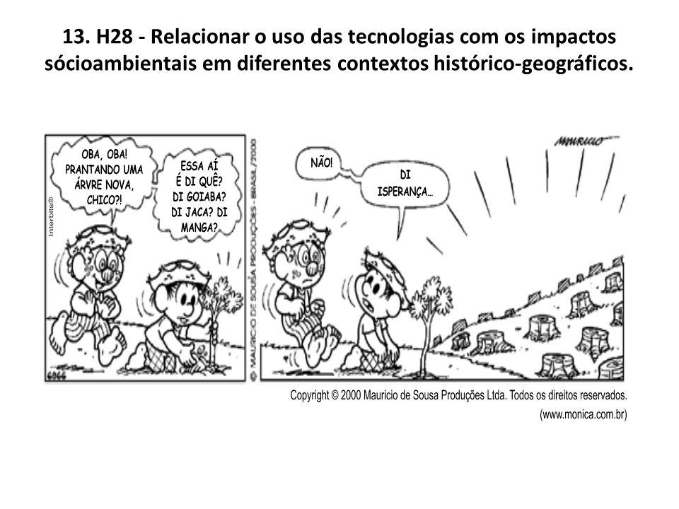 13. H28 - Relacionar o uso das tecnologias com os impactos sócioambientais em diferentes contextos histórico-geográficos.