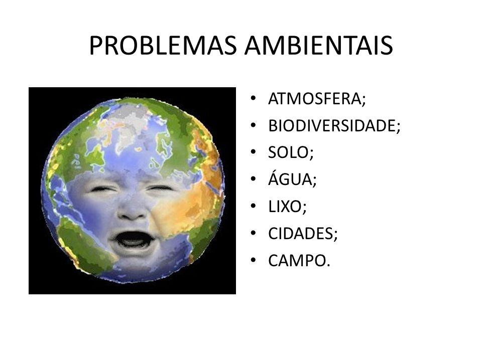 PROBLEMAS AMBIENTAIS ATMOSFERA; BIODIVERSIDADE; SOLO; ÁGUA; LIXO; CIDADES; CAMPO.