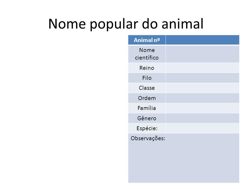 Nome popular do animal Animal nº2 Nome científico Reino Filo Classe Ordem Família Gênero Espécie: Observações: