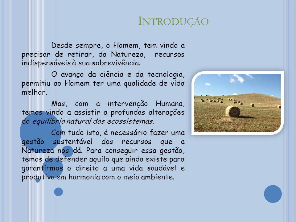 A UTORES -> André Costa Nº 4 8º A -> Bruno Lopes Nº 7 8º A