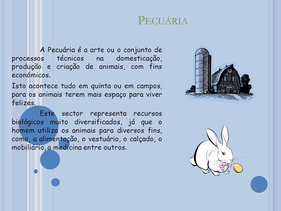 C AÇA Caça é a perseguição de um animal a outro, normalmente com intenção de abate.