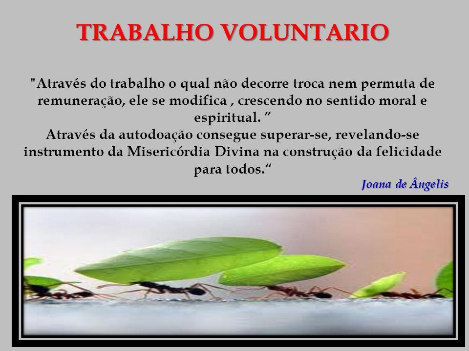TRABALHO VOLUNTARIO