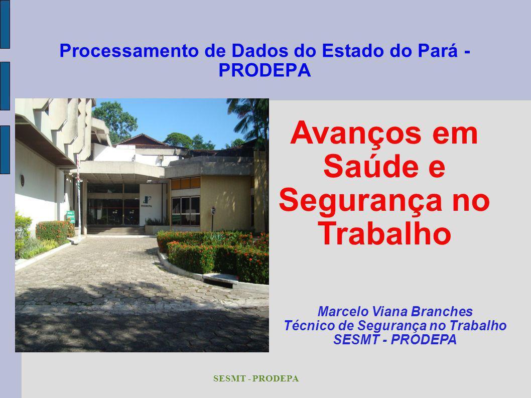 SESMT - PRODEPA Processamento de Dados do Estado do Pará - PRODEPA Avanços em Saúde e Segurança no Trabalho Marcelo Viana Branches Técnico de Seguranç