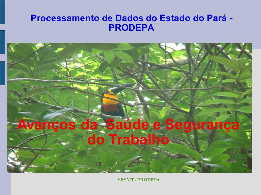 Processamento de Dados do Estado do Pará - PRODEPA SESMT - PRODEPA Avanços da Saúde e Segurança do Trabalho