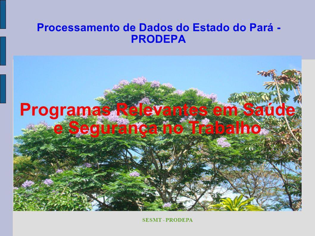 Processamento de Dados do Estado do Pará - PRODEPA SESMT - PRODEPA Programas Relevantes em Saúde e Segurança no Trabalho