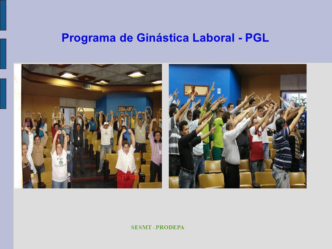Programa de Ginástica Laboral - PGL SESMT - PRODEPA