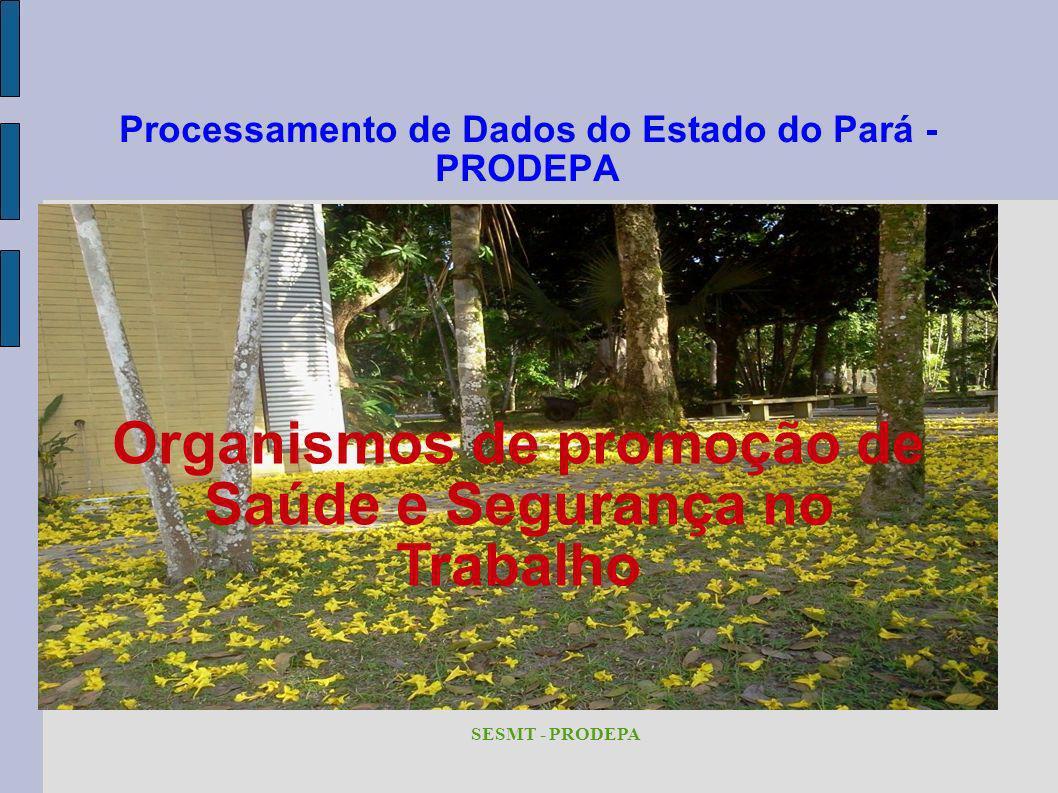 Processamento de Dados do Estado do Pará - PRODEPA SESMT - PRODEPA Organismos de promoção de Saúde e Segurança no Trabalho