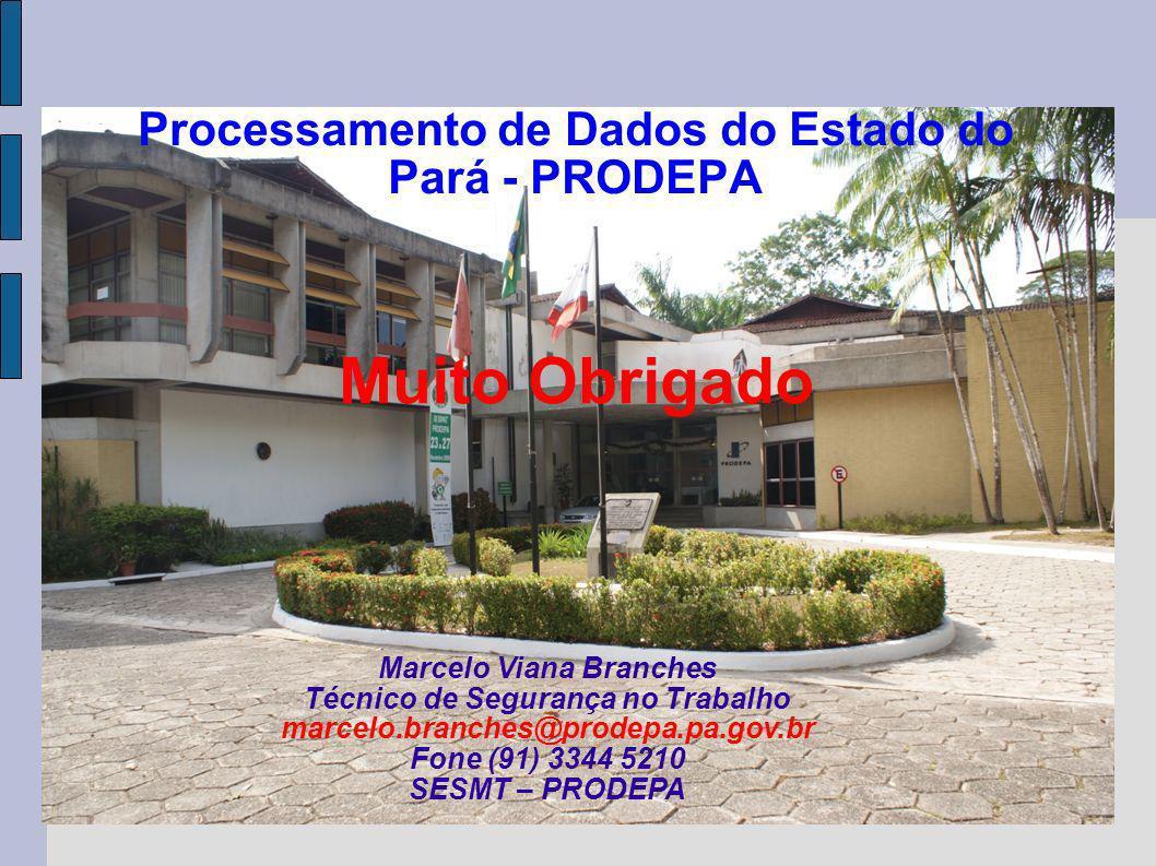 Marcelo Viana Branches Técnico de Segurança no Trabalho marcelo.branches@prodepa.pa.gov.br Fone (91) 3344 5210 SESMT – PRODEPA Processamento de Dados