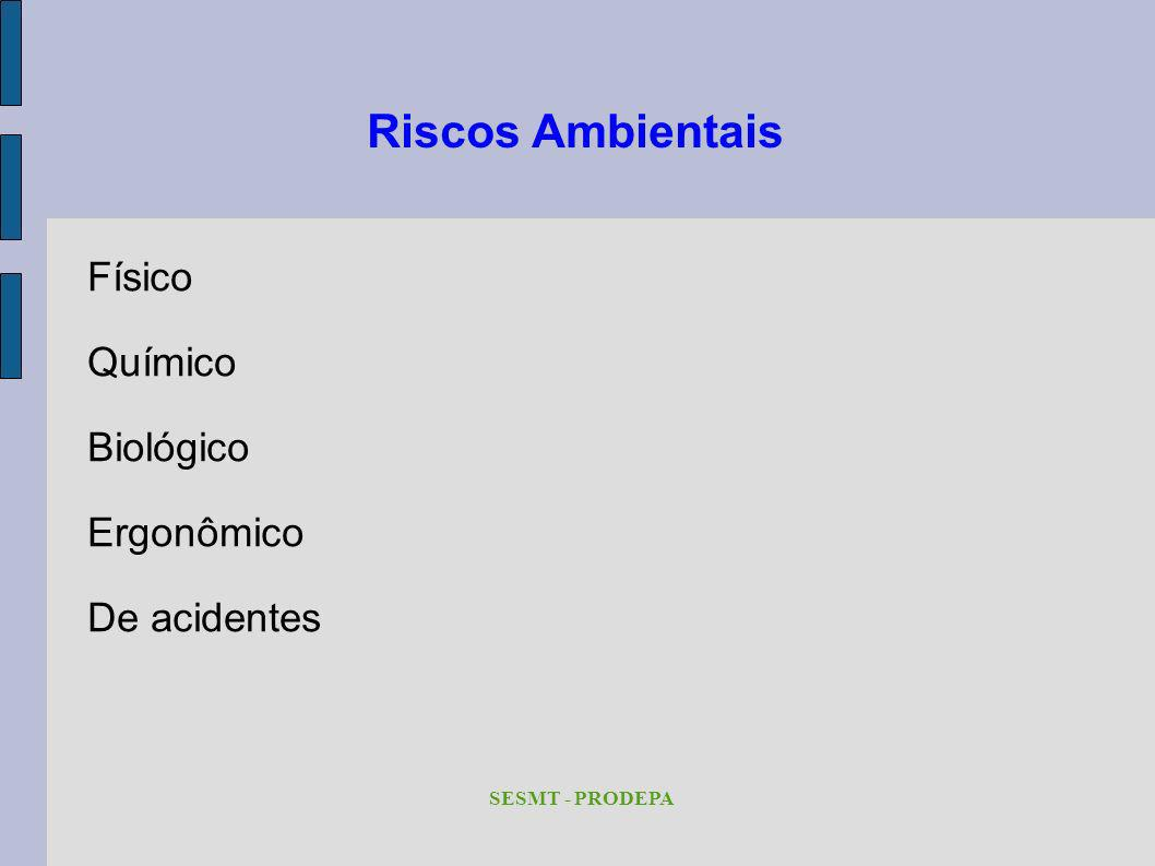 Riscos Ambientais Físico Químico Biológico Ergonômico De acidentes SESMT - PRODEPA