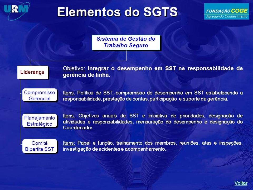 Sistema de Gestão do Trabalho Seguro Liderança Compromisso Gerencial Planejamento Estratégico Comitê Bipartite SST Itens: Política de SST, compromisso