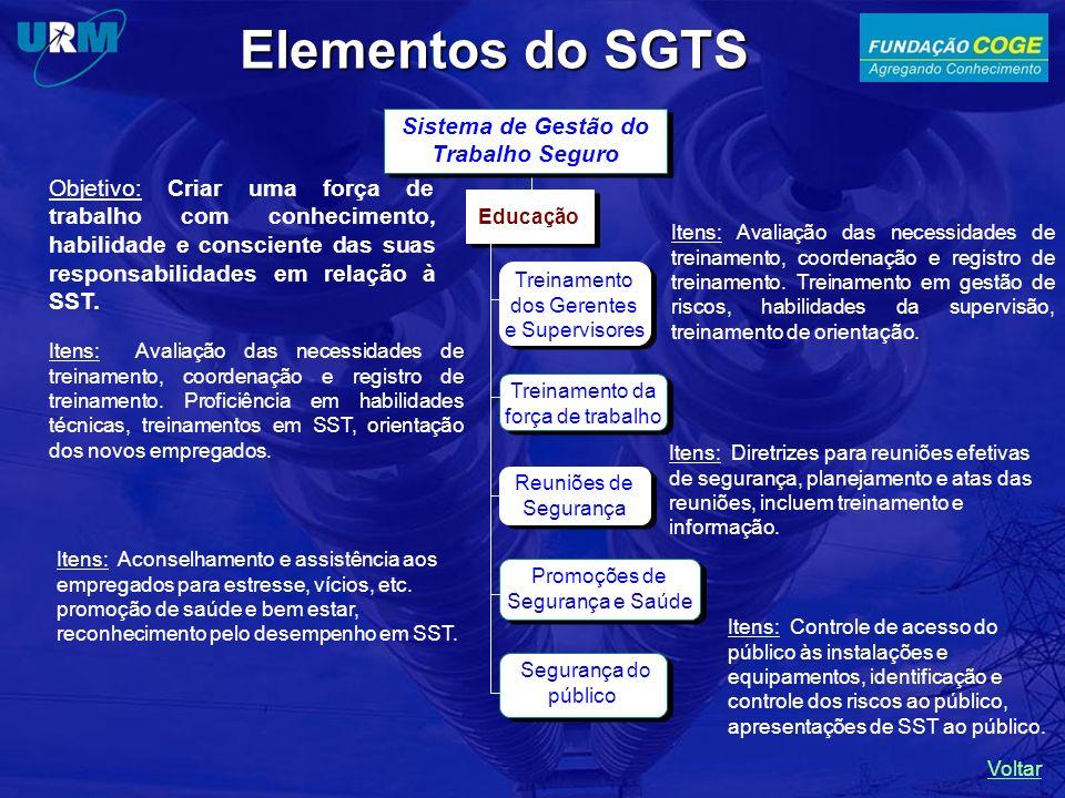 Itens: Controle de acesso do público às instalações e equipamentos, identificação e controle dos riscos ao público, apresentações de SST ao público.