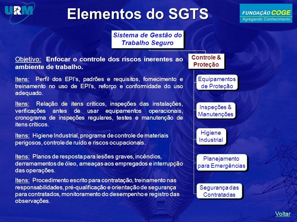 Elementos do SGTS Higiene Industrial Planejamento para Emergências Segurança das Contratadas Objetivo: Enfocar o controle dos riscos inerentes ao ambi