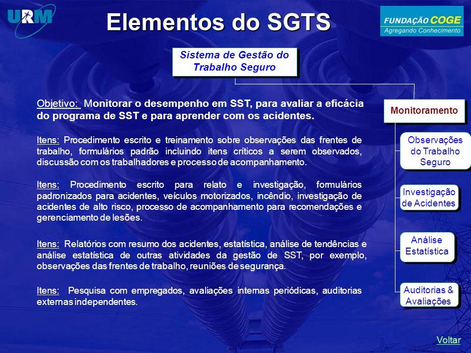Elementos do SGTS Sistema de Gestão do Trabalho Seguro Monitoramento Observações do Trabalho Seguro Investigação de Acidentes Auditorias & Avaliações Análise Estatística Objetivo: Monitorar o desempenho em SST, para avaliar a eficácia do programa de SST e para aprender com os acidentes.