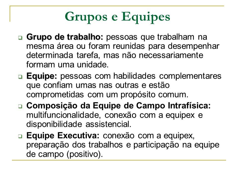 Grupos e Equipes Grupo de trabalho: Grupo de trabalho: pessoas que trabalham na mesma área ou foram reunidas para desempenhar determinada tarefa, mas