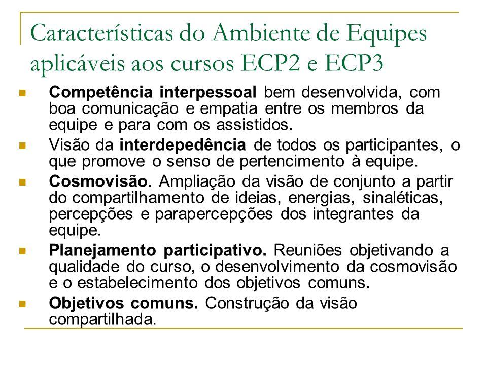 Características do Ambiente de Equipes aplicáveis aos cursos ECP2 e ECP3 Competência interpessoal bem desenvolvida, com boa comunicação e empatia entr