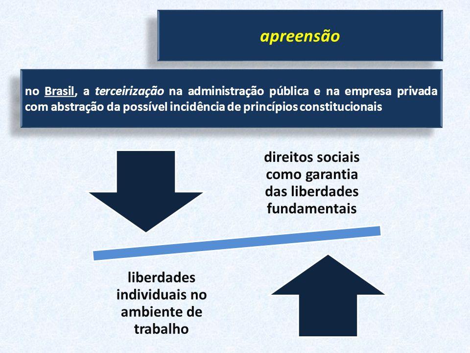 apreensão no Brasil, a terceirização na administração pública e na empresa privada com abstração da possível incidência de princípios constitucionais