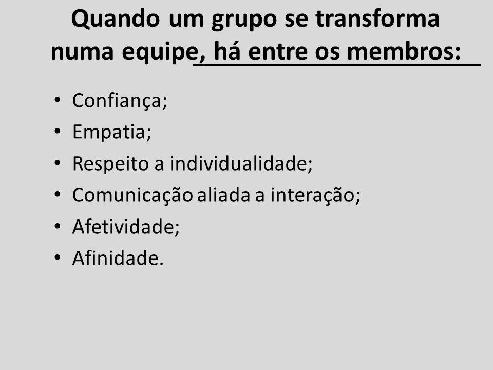 Quando um grupo se transforma numa equipe, há entre os membros: Confiança; Empatia; Respeito a individualidade; Comunicação aliada a interação; Afetiv