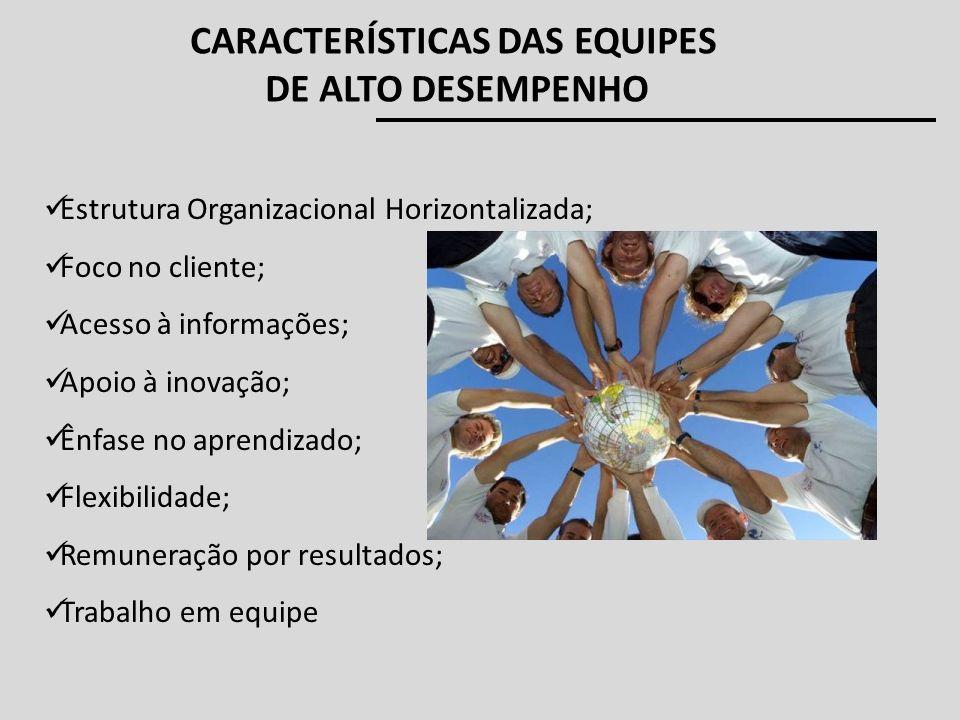 Estrutura Organizacional Horizontalizada; Foco no cliente; Acesso à informações; Apoio à inovação; Ênfase no aprendizado; Flexibilidade; Remuneração p