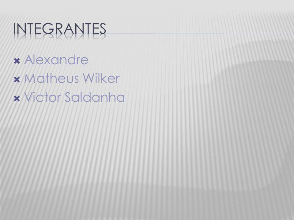 Alexandre Matheus Wilker Victor Saldanha