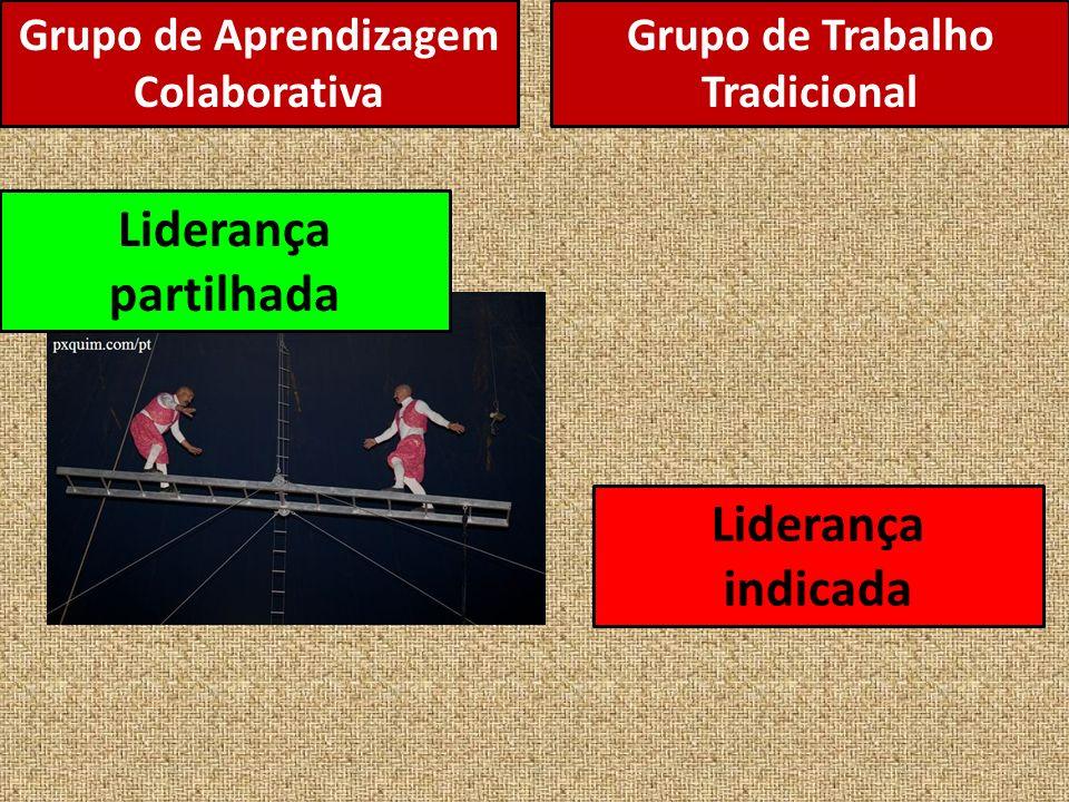 Grupo de Aprendizagem Colaborativa Liderança partilhada Liderança indicada Grupo de Trabalho Tradicional