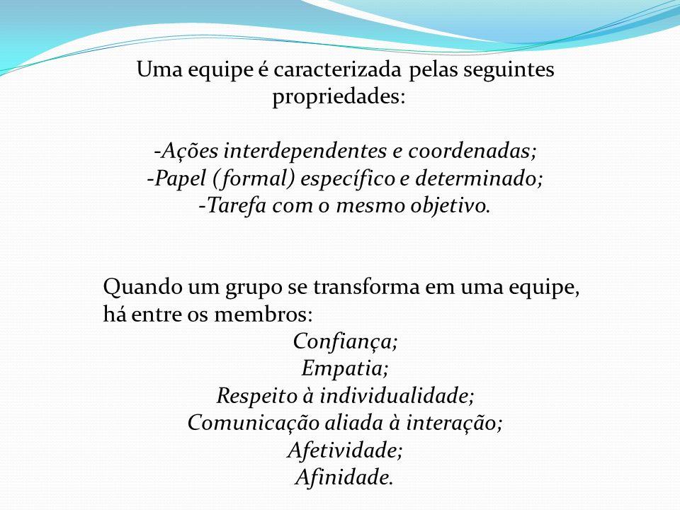 Uma equipe é caracterizada pelas seguintes propriedades: -Ações interdependentes e coordenadas; -Papel (formal) específico e determinado; -Tarefa com