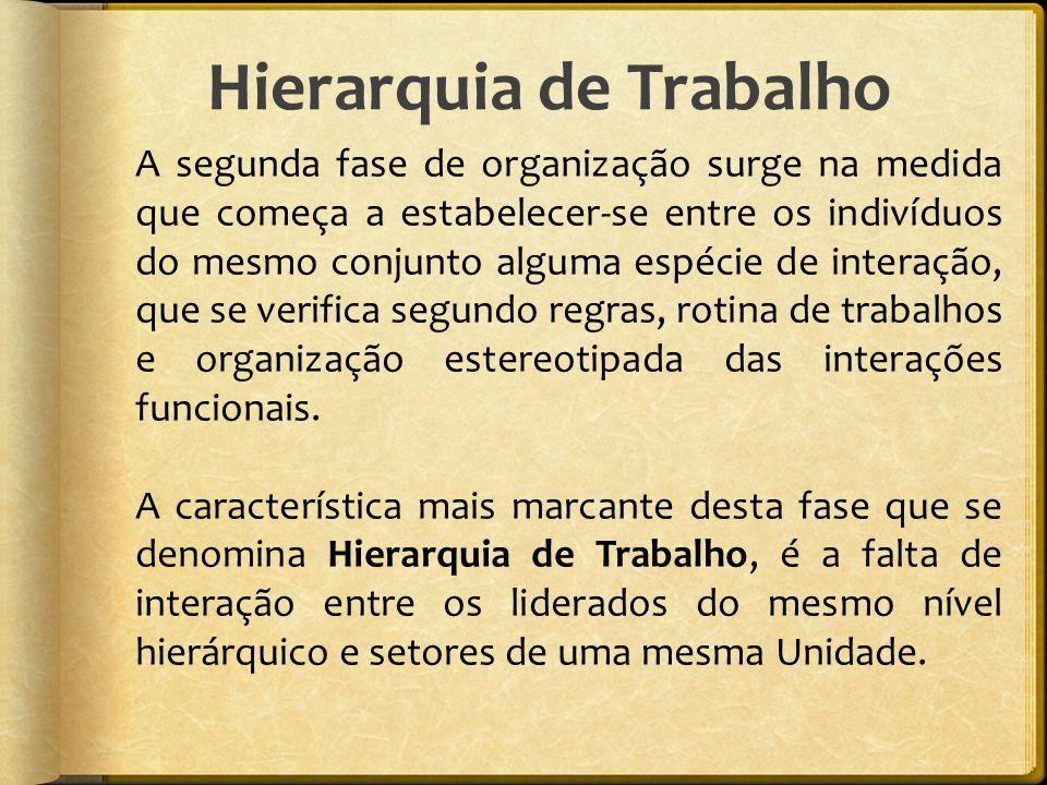 Hierarquia de Trabalho A segunda fase de organização surge na medida que começa a estabelecer-se entre os indivíduos do mesmo conjunto alguma espécie