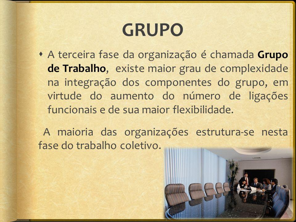 GRUPO A terceira fase da organização é chamada Grupo de Trabalho, existe maior grau de complexidade na integração dos componentes do grupo, em virtude do aumento do número de ligações funcionais e de sua maior flexibilidade.
