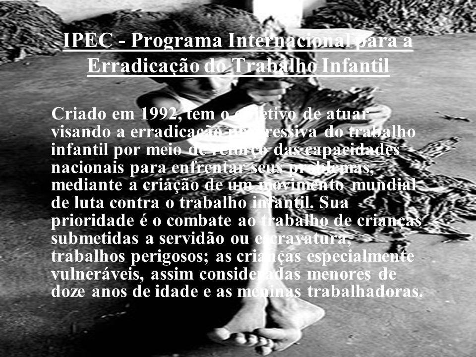 IPEC - Programa Internacional para a Erradicação do Trabalho Infantil Criado em 1992, tem o objetivo de atuar visando a erradicação progressiva do tra