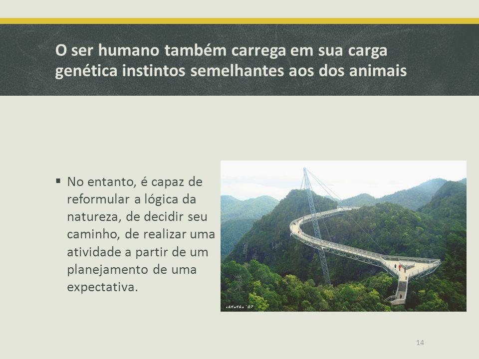 O ser humano também carrega em sua carga genética instintos semelhantes aos dos animais No entanto, é capaz de reformular a lógica da natureza, de dec