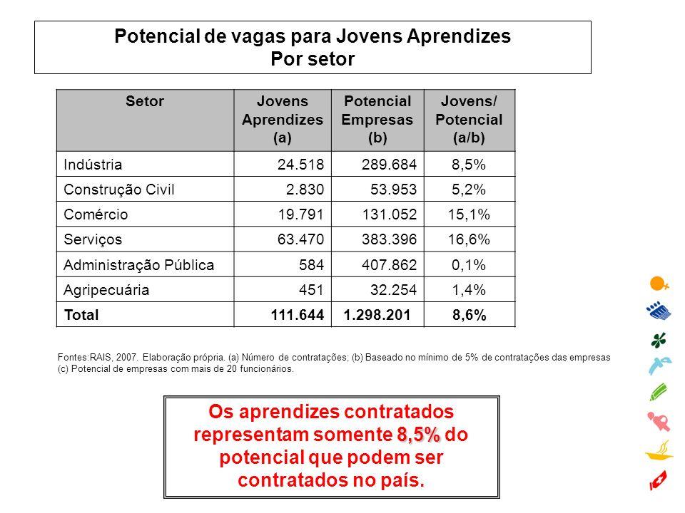 Potencial de vagas para Jovens Aprendizes Por setor Fontes:RAIS, 2007. Elaboração própria. (a) Número de contratações; (b) Baseado no mínimo de 5% de