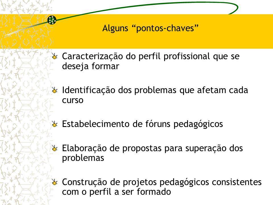 Alguns pontos-chaves Caracterização do perfil profissional que se deseja formar Identificação dos problemas que afetam cada curso Estabelecimento de f