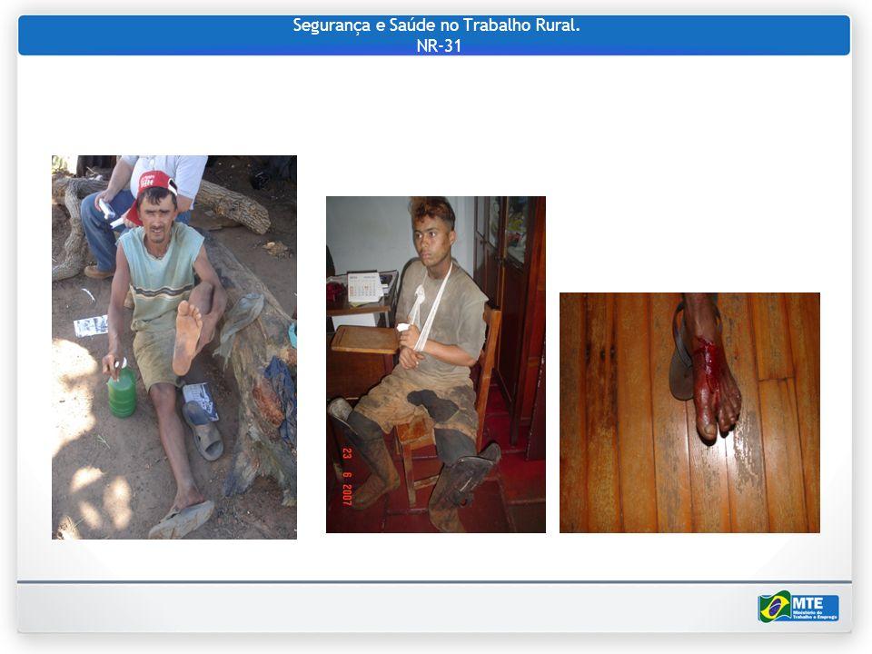 Segurança e Saúde no Trabalho Rural. NR-31