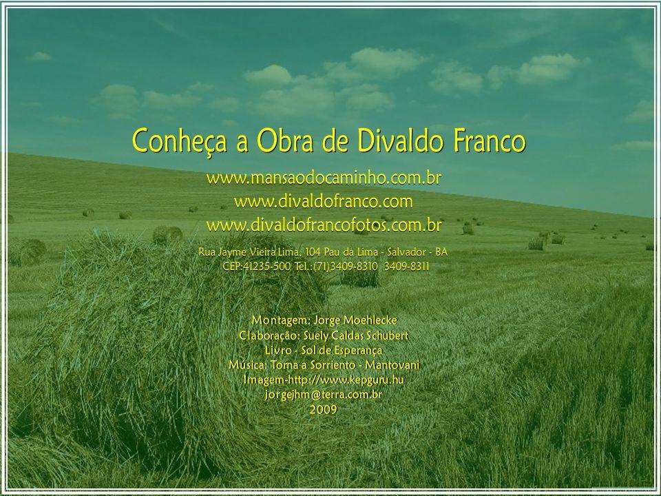 trabalhemos, com paciência, o nosso pretérito no nosso presente, a benefício do nosso futuro. Divaldo Franco / Caírbar Schutel