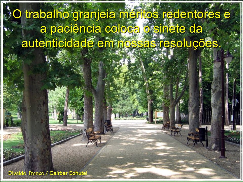Diante da enfermidade pertinaz: trabalho e paciência. Divaldo Franco / Caírbar Schutel